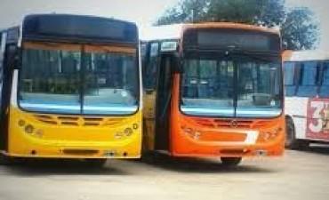 Rechazo mayoritario al nuevo sistema de transporte de la ciudad de Córdoba