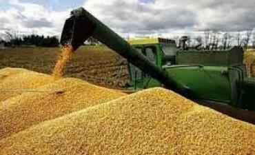 Casi mil millones de dólares más en Córdoba por cosecha record