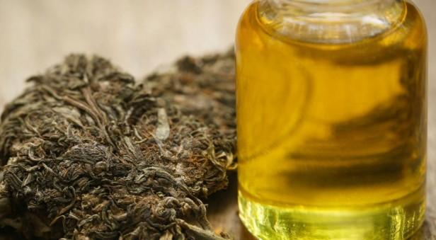 Indecisos en Córdoba con la legislación del uso medicinal de marihuana