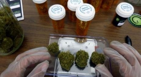 Ya es legal el uso medicinal del cannabis
