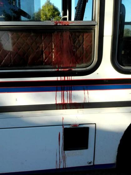 Crimen del colectivero: dos testigos reconocieron al paraguayo detenido