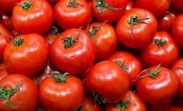 Otra vez el tomate en la picota