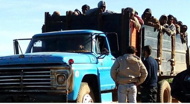 94 empleados de una finca realizaban trabajo esclavo en Salta