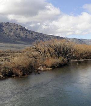 ¿De quién es el cuerpo que apareció en el río Chubut?