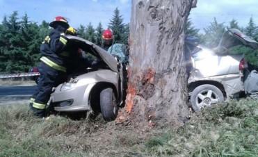 Un hombre murió luego de despitarse su auto e impactar contra un arbol
