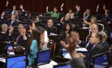 Cámara de Senadores aprobó la ley de Emergencia Social