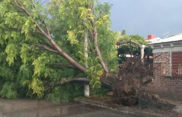 El temporal dejó destrozos y zonas anegadas en el país