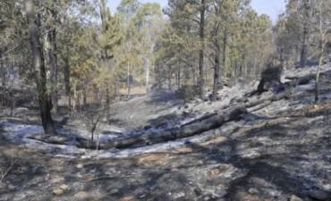 Incendios en Córdoba: aún quedan focos activos