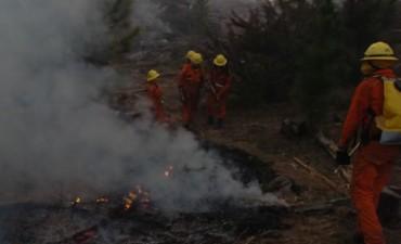 El fuego arrasó con 17 mil hectáreas en La Pampa de Olaen