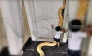 Los argentinos estamos acostumbrados a convivir con una serpiente