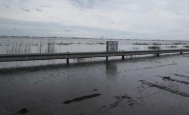 Hay al menos 33 caminos rurales intransitables en el sudeste provincial