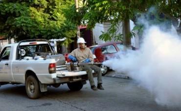 Dengue: declaran la epidemia a nivel nacional