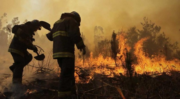 Un pueblo fue arrasado entero fue arrasado por el fuego en Chile
