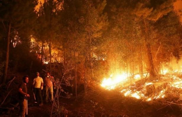 Córdoba envió Bomberos para combatir el fuego en Chile