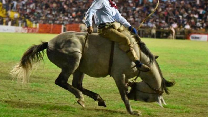 Murió un caballo que resultó herido en el Festival de Jesús María