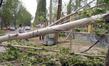 Alerta para Córdoba por fuertes vientos