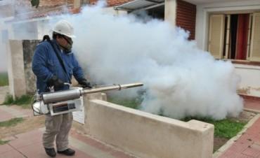 Córdoba pone en marcha un plan para combatir mosquitos