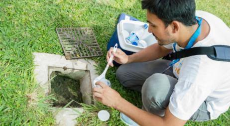 Encuentran Aedes en el 25,5% de las viviendas