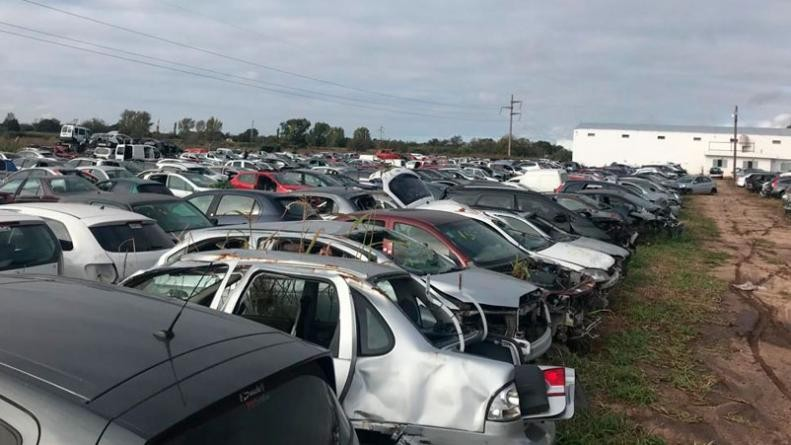 Secuestraron más de 100 millones de pesos en vehículos y autopartes en Colonia Caroya