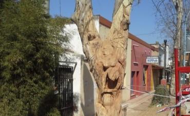 El Museo a Cielo Abierto Mendiolaza