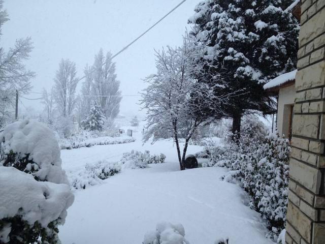 Neuquén en emergencia por temporal de nieve