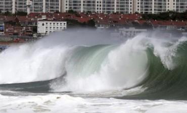 El tifón Neoguri dejó siete muertos y 54 heridos tras su paso por Japón