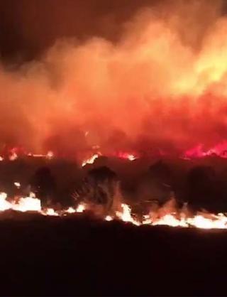 Se incendiaron alrededor de 200 hectáreas entre Laguna Larga y Manfredi