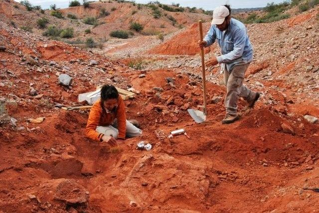 Hallan al dinosaurio gigante más antiguo del mundo en San Juan
