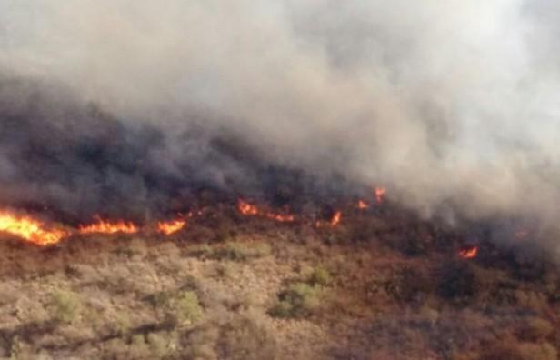 Combaten cuatro incendios en las sierras