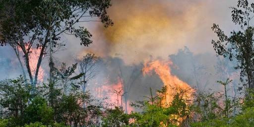 Al menos 10 mil focos de incendio en el Amazonas