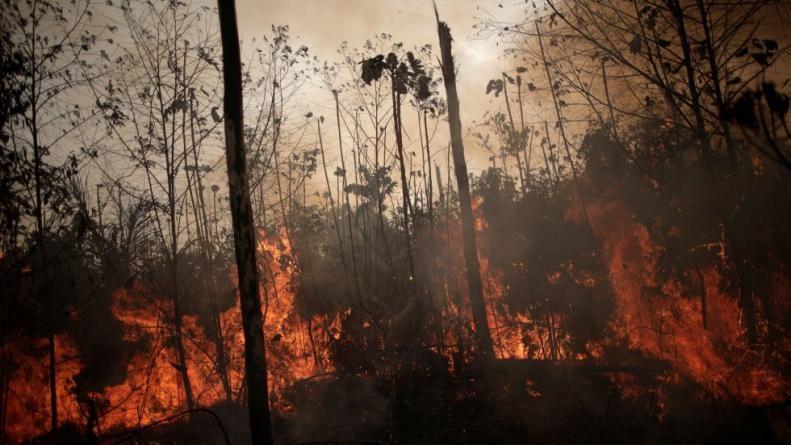 13 bomberos cordobeses viajarán a combatir los incendios en el Amazonas