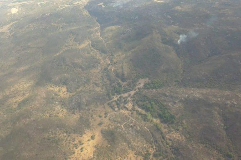 Controlan incendio en Tanti
