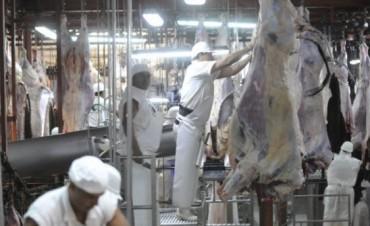 Los frigoríficos de Córdoba podrían subir 60% su faena anual