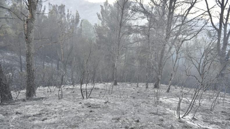 Sigue la lucha y logran controlar una parte del incendio en Villa Giardino