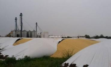 Vuelven los ataKes contra silos bolsa en la provincia