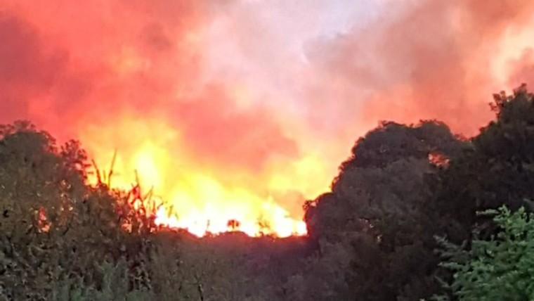 Un detenido por los incendios en Traslasierra
