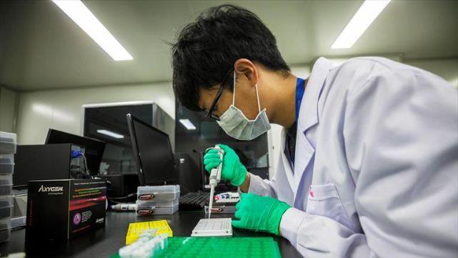 Modificación genética: alarma en la comunidad científica