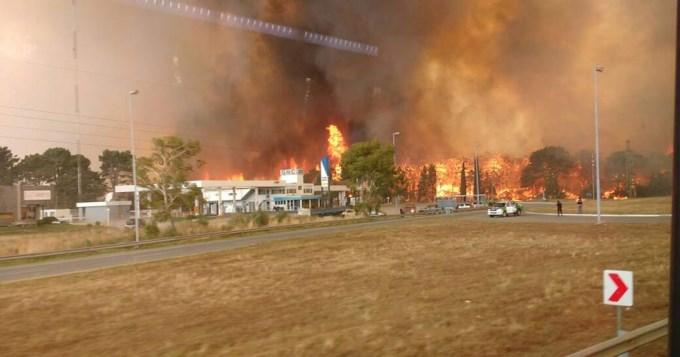 Gran incendio de bosques en la Costa argentina
