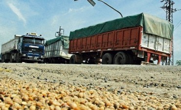 Jovita: delincuentes asaltaron campos y robaron soja equivalente a 10 camiones