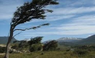 Loco...Loco.. hoy una máxima de 31 y luego viento del sur
